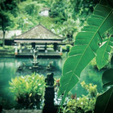 Be Active Bali